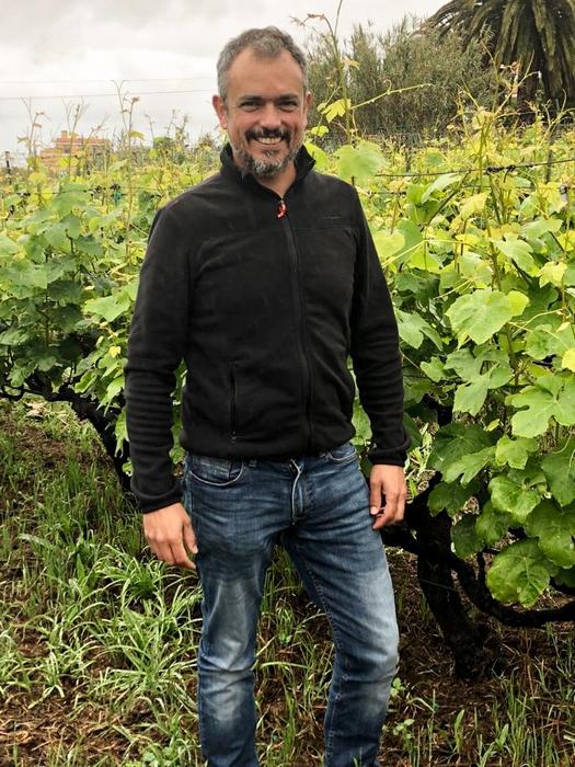 viticultura Canaria