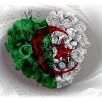 """السلسلة البحثية: """"طيور تعيش في الجزائر"""" - خالد أبو إسحاق"""