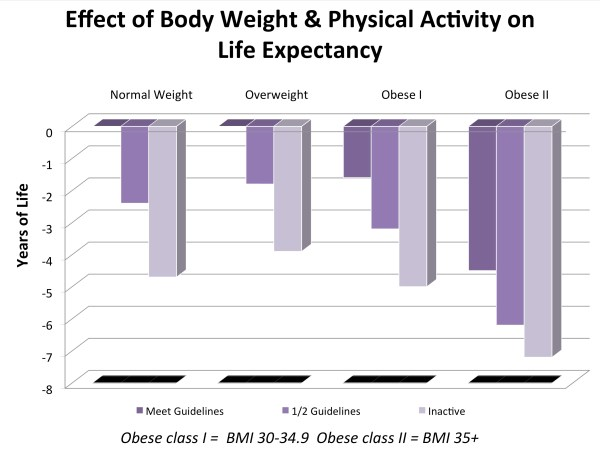 Physical Activity Charts and Graphs