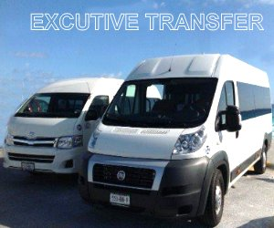 Executive Transfer  on Van