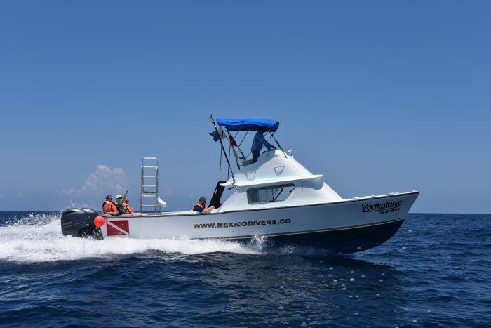 Vodkatonic transfer to Isla Mujeres