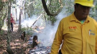 Photo of Incendio forestal en OTB logra 95% de control ser controlado