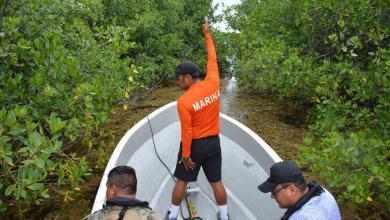 Photo of Guardia Nacional y brigadistas continúan búsqueda de una persona privada de su libertad en la laguna Nichupté