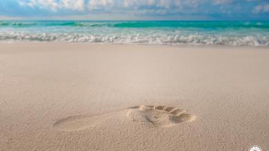 Photo of Playas de Cancún logran recertificación Blue Flag