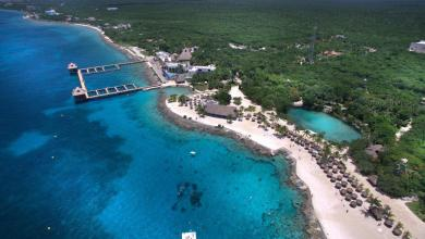 Photo of Viene buen invierno para Cozumel; por recuperar 40% de turismo: CCE