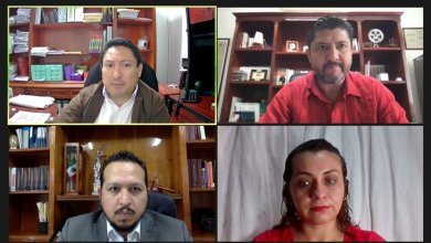 Photo of El Pleno del TEQROO declara por unanimidad de votos cumplimiento de Morena
