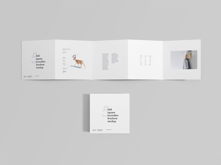 5 fold square accordion brochure mockup free mockup