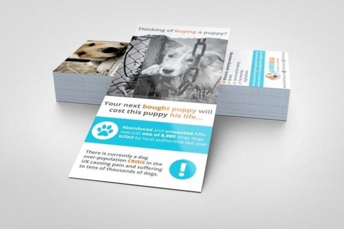 rack card mock up 1 design rack cards branding design prints