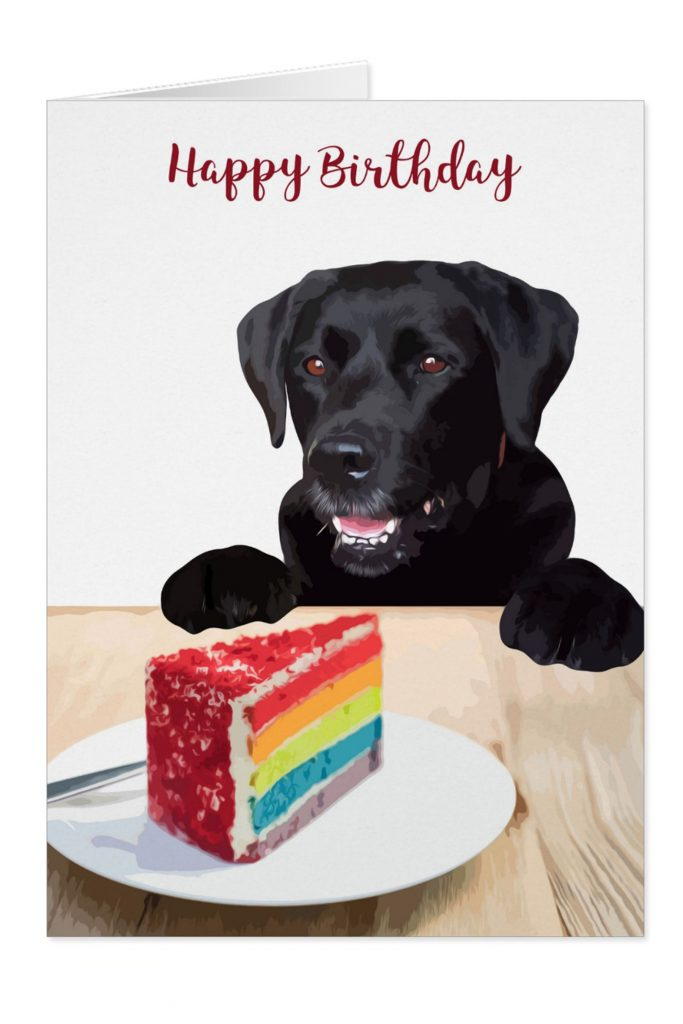 black lab birthday card dog birthday card zazzle