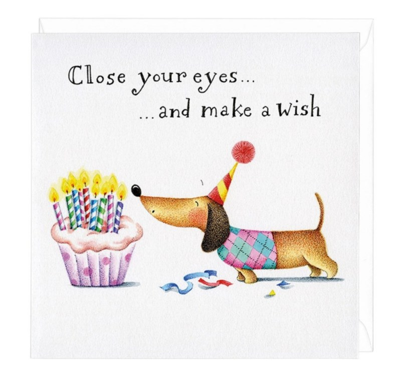 make a wish dachshund greeting card birthday wishes