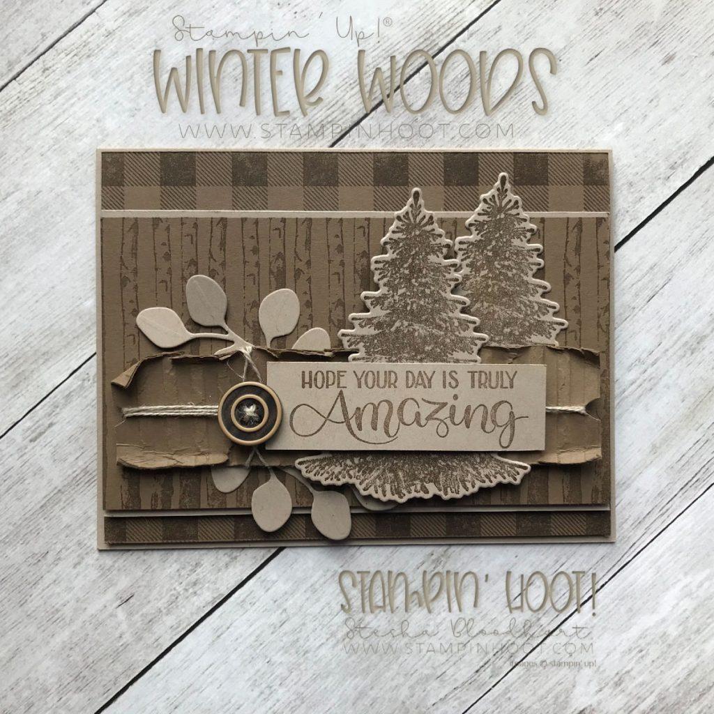 winter woods masculine birthday card stampin hoot
