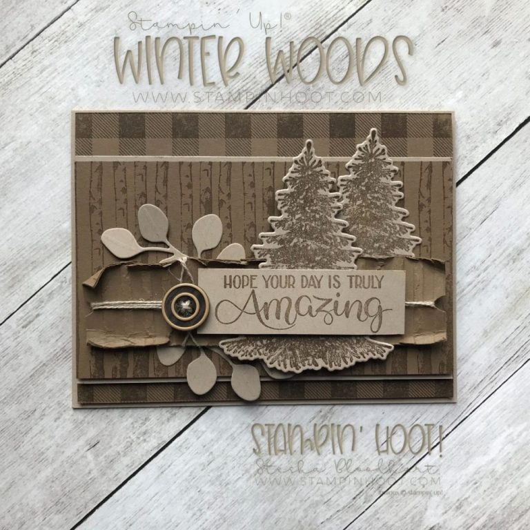 winter woods masculine birthday card stampin hoot