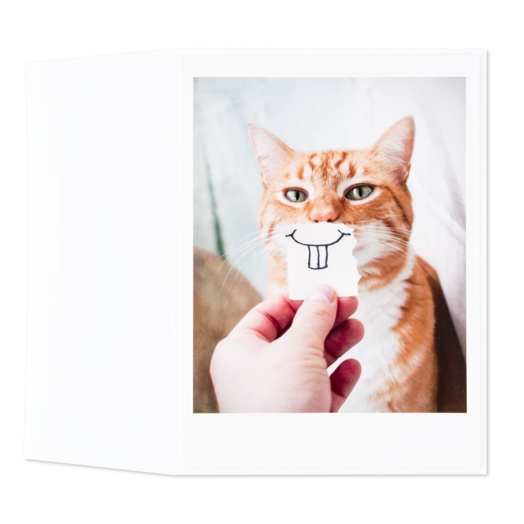 bucktooth kitty cat birthday card