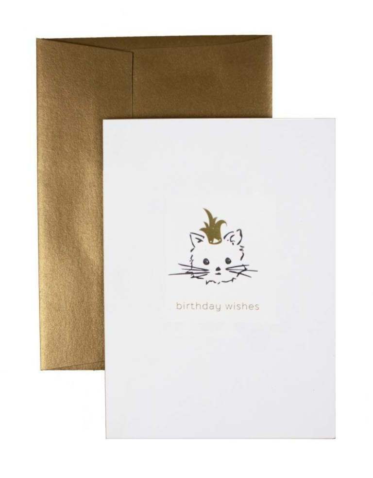 oblation papers press birthday wishes cat card