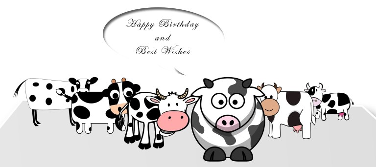 funny birthday cards for friends 1birthday greetings