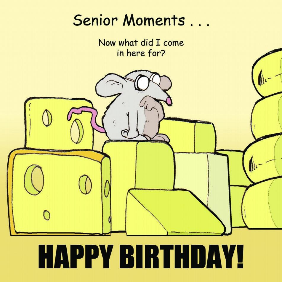 tw286 senior moments funny happy birthday card