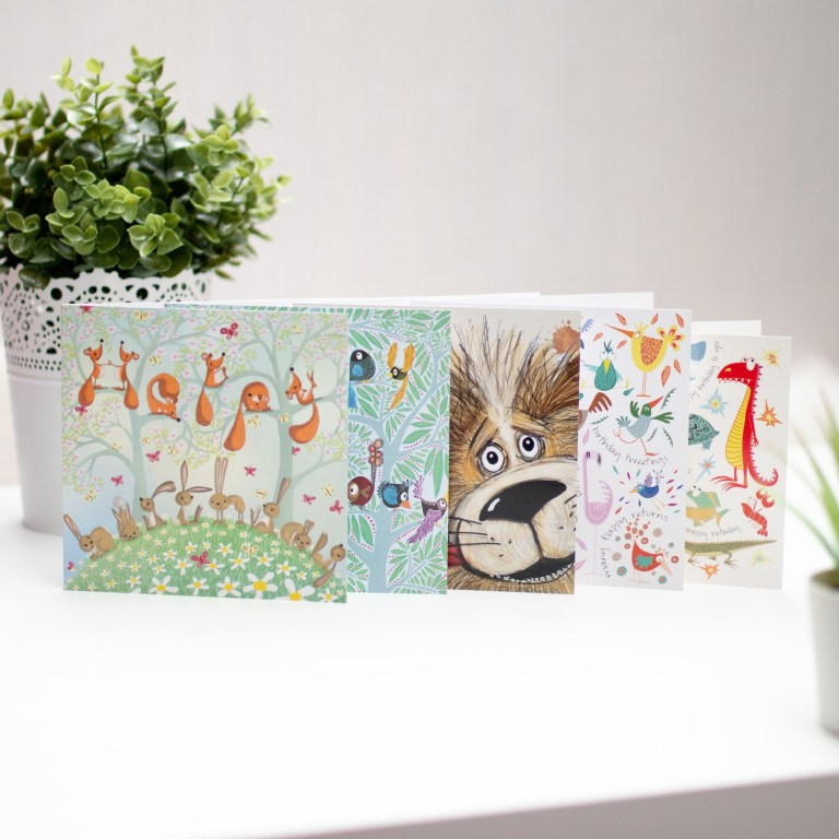 illustrated birthday cards set of five