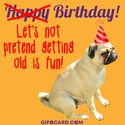 happy birthday funny gif animations free download tap