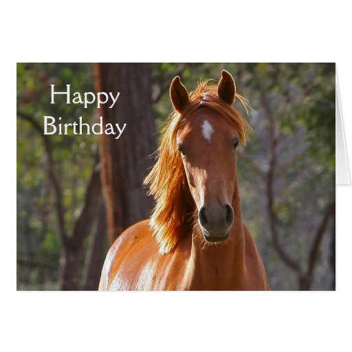 beautiful chestnut horse photo birthday card zazzle