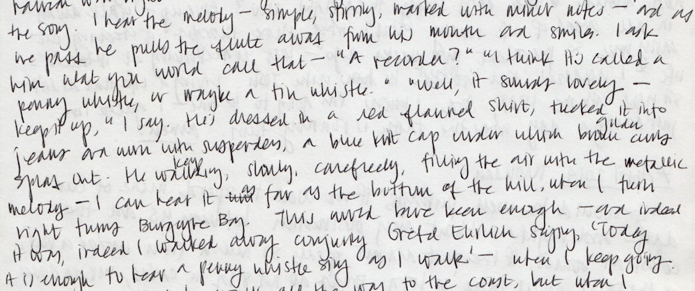 Handwritten journal notes