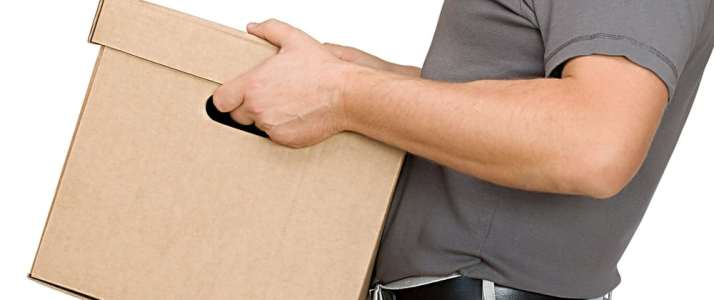 Person Carrying Box