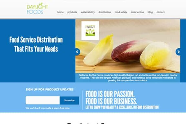 Website design project for Daylight Foods