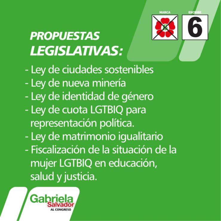 Propuestas de Gabriela Salvador Cárdenas