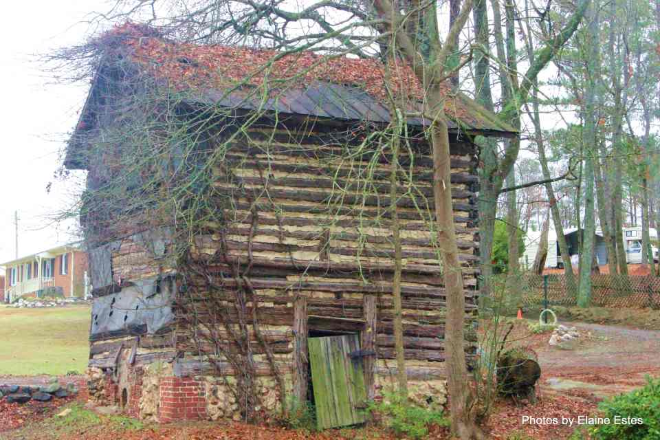 Tobacco Planting and Harvesting in NC's Olden Days 3