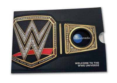 WWE Brochure