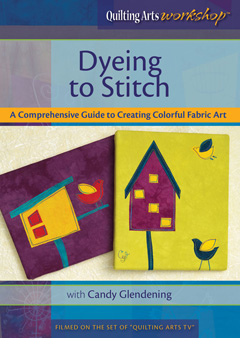 dyeing-to-stitch-dvd-cover-240