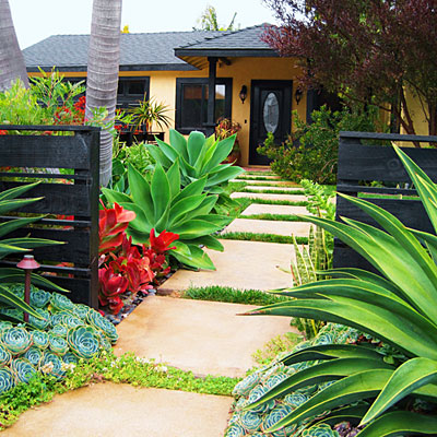 drought friendly landscaping ideas
