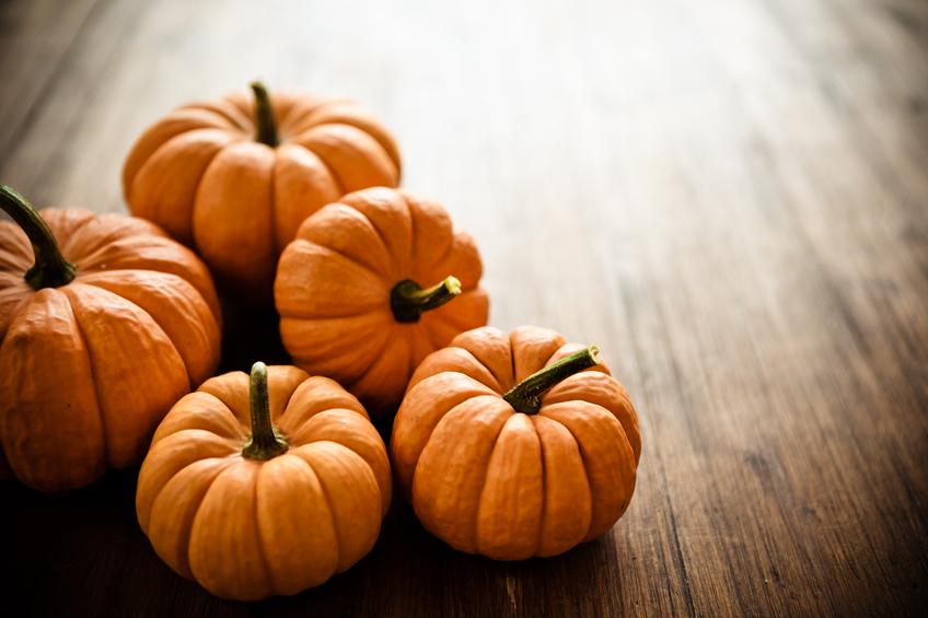 Fall Wallpaper Backgrounds Pumpkins This Month S Beauty Secret Pumpkin Candis