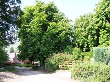 Bamford Mill and surroundings