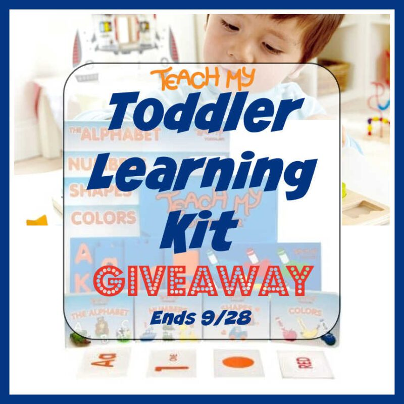 Toddler Learning Kit #Giveaway Ends 9/28 @teachmy @las930