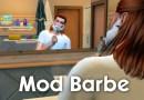 mod barbe sims 4
