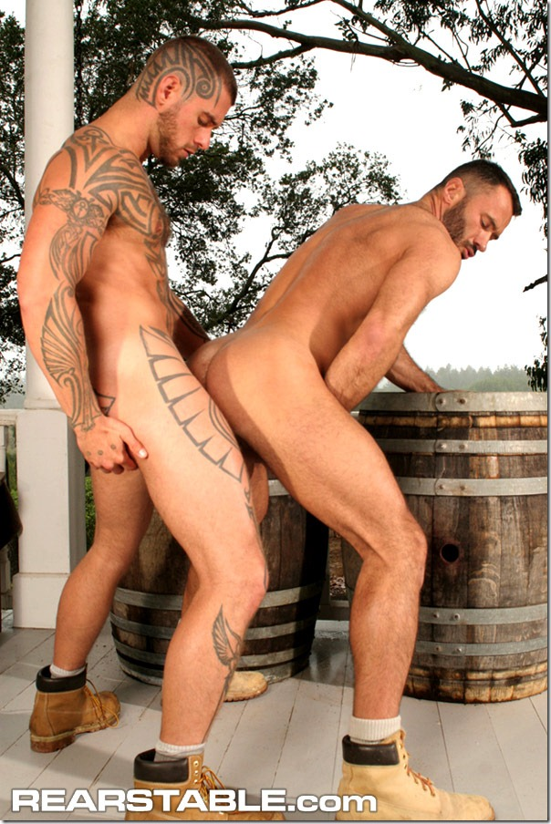 rear stable - LOGAN MCCREE AND WILFRIED KNIGHT