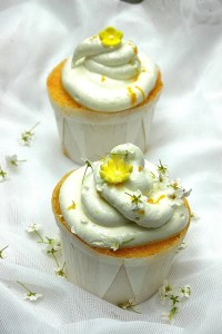 The Most Amazing Summer Cupcakes - CandyStore.com
