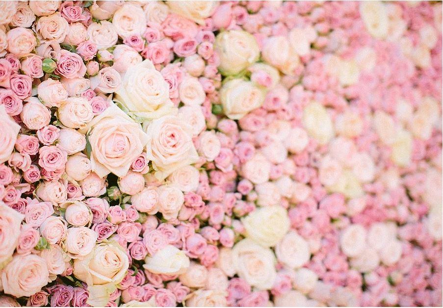 Photocall flower