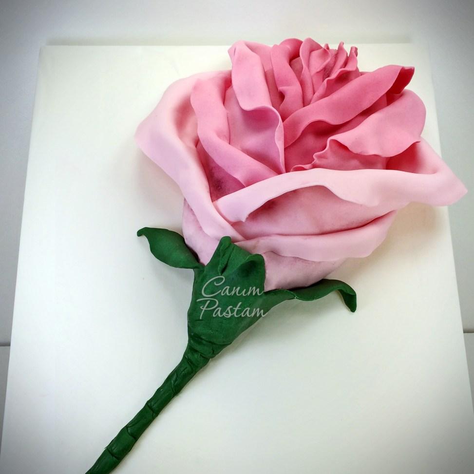 Güllü pasta Rose Cake Pink Rose Cake