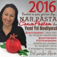 12.2015 CanımPastam Kampanya