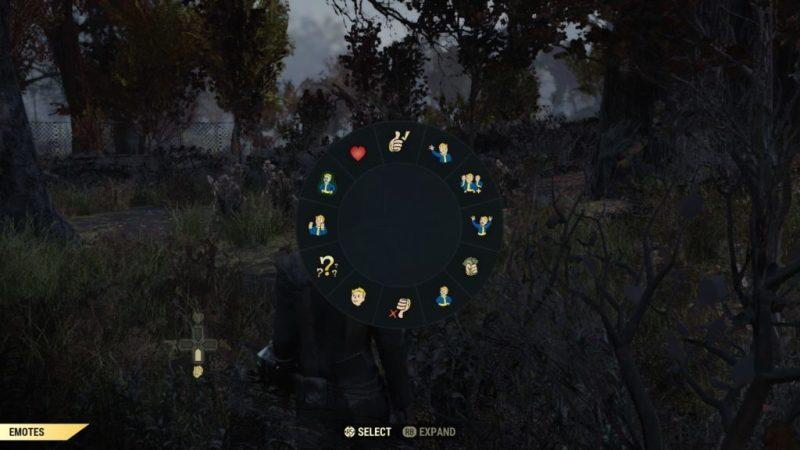 Emote selection screen
