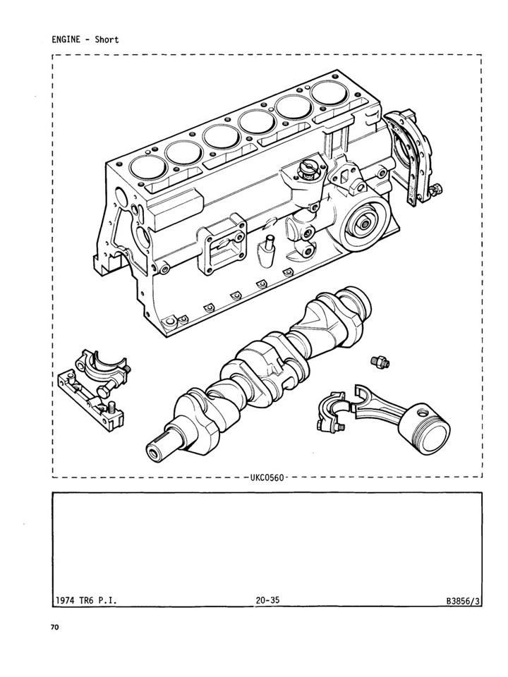 73 Triumph Tr6 Wiring Harness. . Wiring Diagram