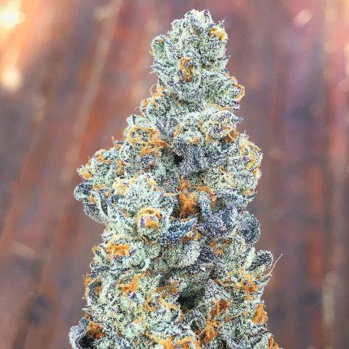 buy Girl Scout Cookies weed