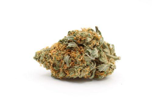 Hybrids Cannabis