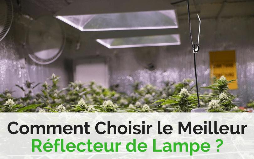 lampe pour faire pousser du cannabis excellent comment faire germer graine cannabis with lampe. Black Bedroom Furniture Sets. Home Design Ideas