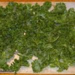 Spread seasoned, oiled kale leaves on a single layer on a baking sheet.