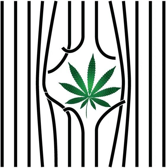 celebrity marijuana arrests