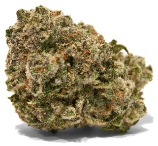 Raspberry Cough weed strain for ADHD