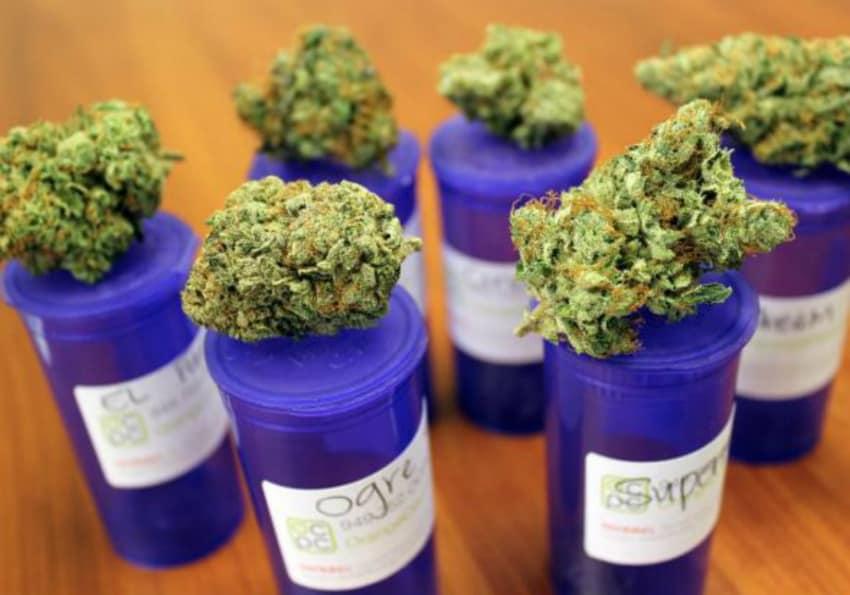 Health Canada legal grow license