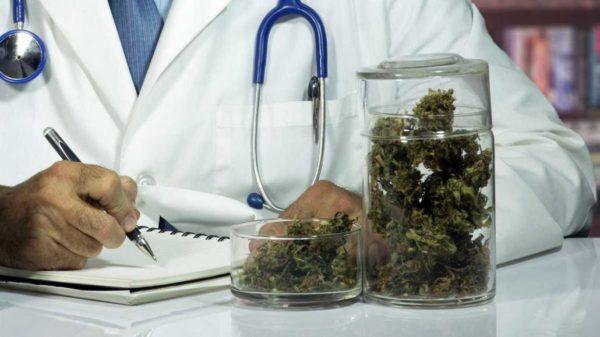 medical marijuana services